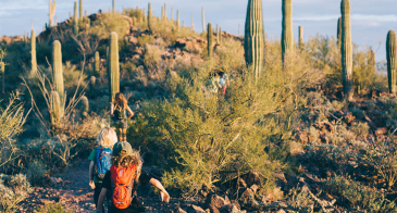 students running up a path outdoors in arizona